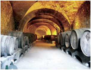 celler_can_bruguera